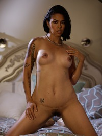 Dana Vespoli Solid Strip 04